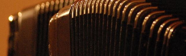 Doppia fisarmonica colore